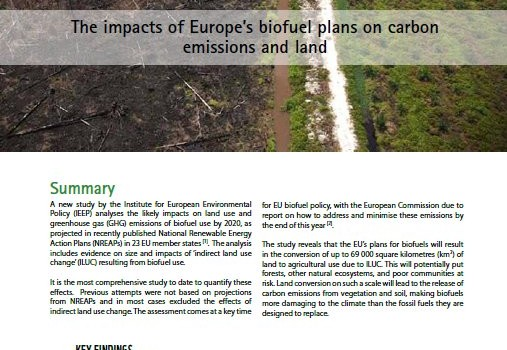 RSPB; ActionAid; Friends of the Earth; Greenpeace (2010): Driving to Destruction