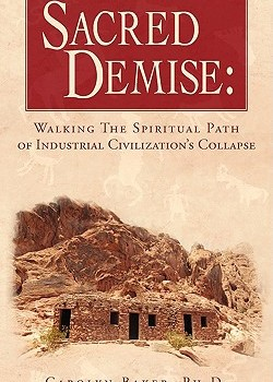 BAKER, CAROLYN (2009): Sacred Demise: Walking the Spiritual Path of Industrial Civilization's Collapse